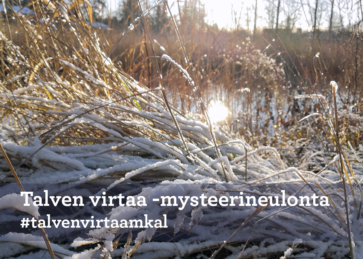 Käsityöohjeet ja -jutut: Talven virtaa -mysteerineulonta OSA 1 – Taitojärjestö